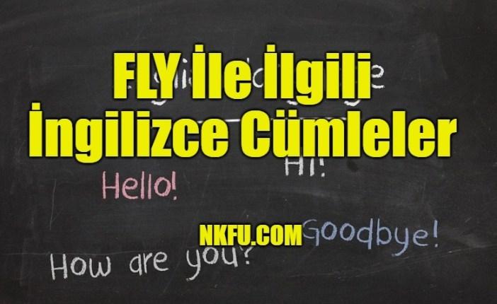 Fly İle İlgili İngilizce Cümleler