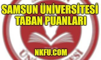 Samsun Üniversitesi