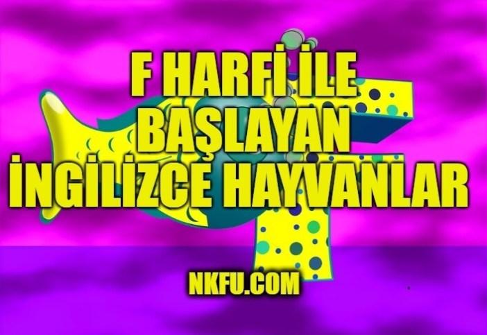 F Harfiyle Başlayan İngilizce Hayvanlar