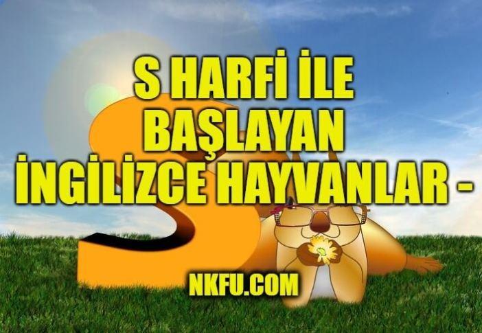 S Harfiyle İngilizce Hayvanlar