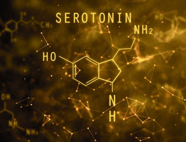 Serotoninin Vücuttaki Görevleri – Serotonin ve Depresyon İlişkisi Nedir?