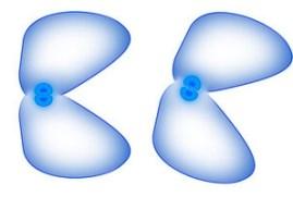 Hücreler Neden Bölünme İhtiyacı Duyar? Hücrelerde Bölünme Nedenleri