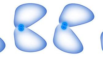 hücre bölünmesi