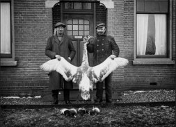 Anonymous photographer, unknown town, the Netherlands, early 20th century.