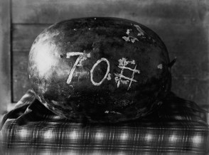 Picture of a melon at a fair in Natchitoches, Louisiana, USA in the 1910s. Photo by the Dutch photographer P. H. van Son who originated from Oirschot, province Brabant, the Netherlands and lived and worked in Louisiana.