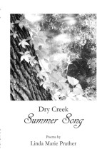 Dry Creek Summer Song book cover
