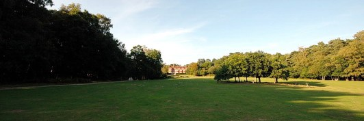 Pegasus NLP Courses are held in the New Forest