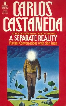 book cover a separate reality