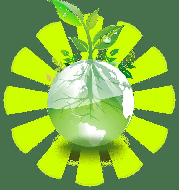 Traduire pour un monde plus durable
