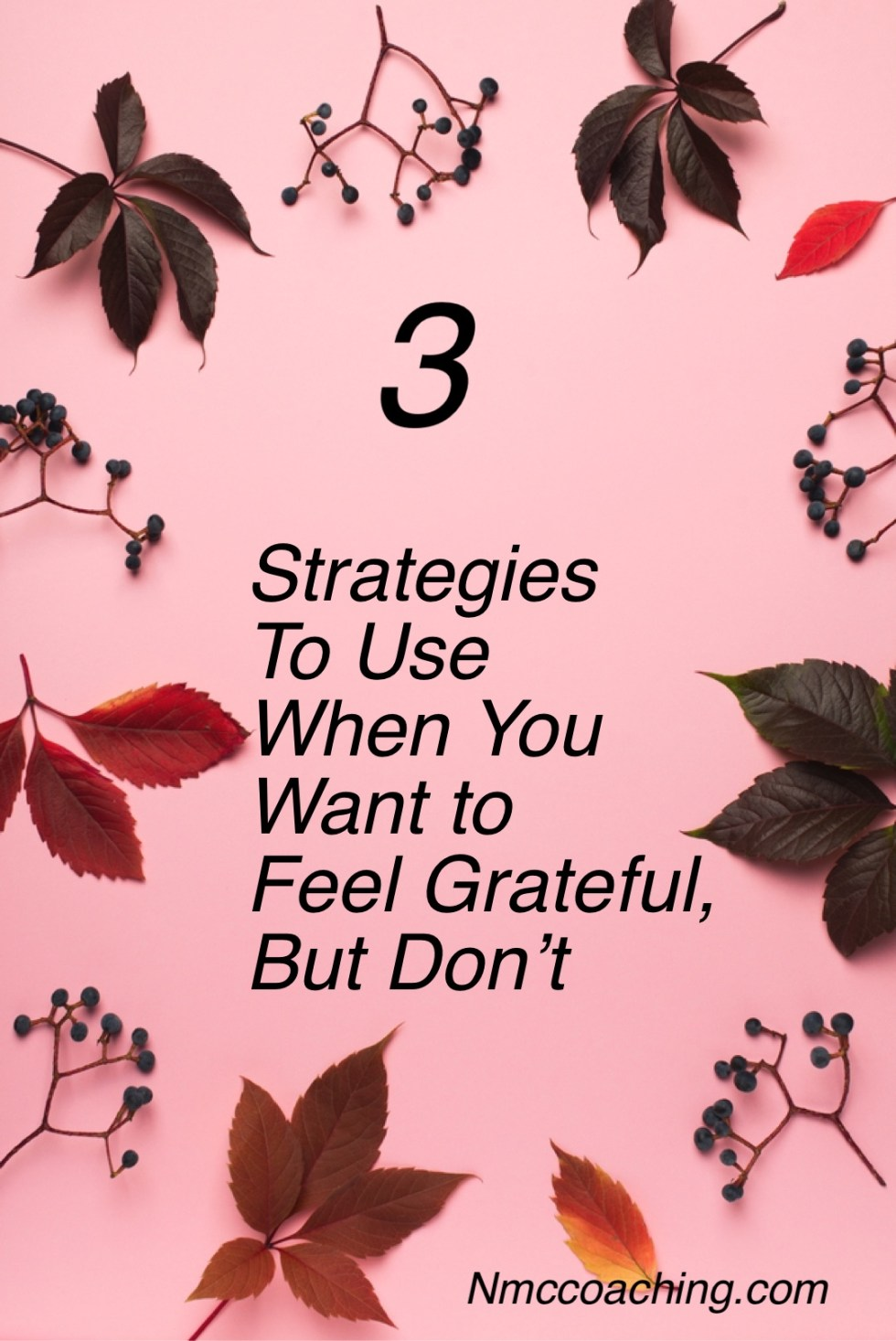 3 strategies to use when you want to feel grateful, but don't.