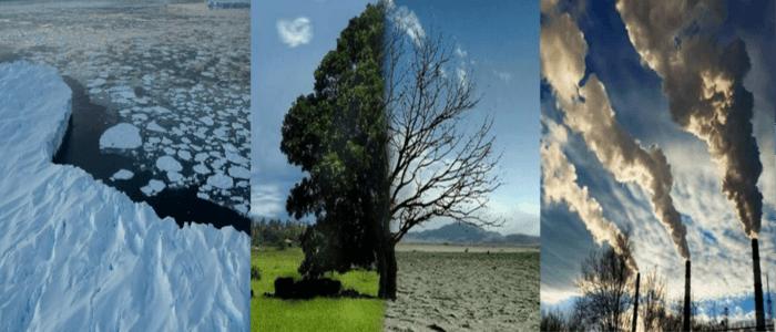 انطلاق فعاليات المؤتمر الدولي الأول للمناخ والبيئة في مصر