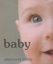 D. Morris Baby