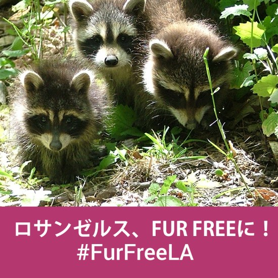 #Fur Free LA
