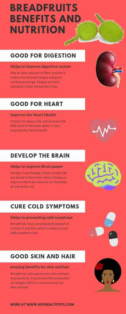 Breadfruits Benefits for health represent in from of infographic