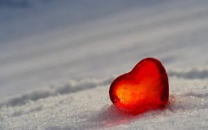 srce-u-ledu