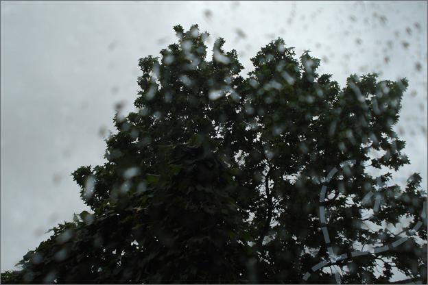 zomerstorm