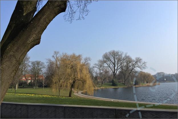 uitzicht op park