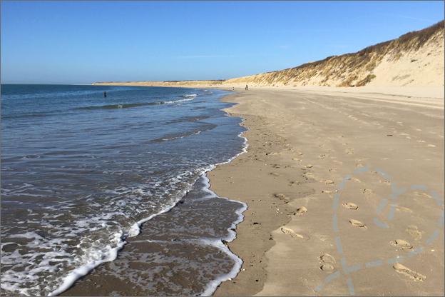 Noordzeestrand Ouddorp zee strand