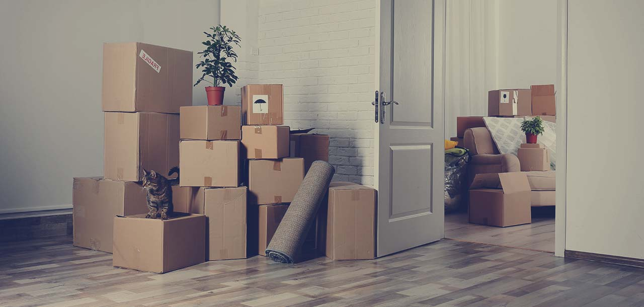 Packers-And-Movers