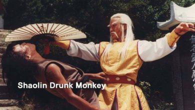 The Shaolin Drunk Monkey (1985)