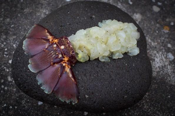 Tartare di aragosta - foto carlodisanto.com