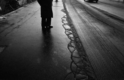 © Flavio Tecchio