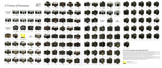 36-videotutorial-MF-AF-Nikon-tree-72-1080x455