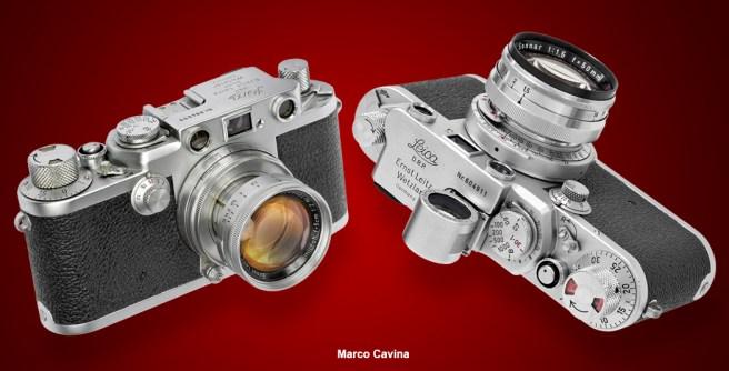 M_Cavina_Canon_100_Macro18
