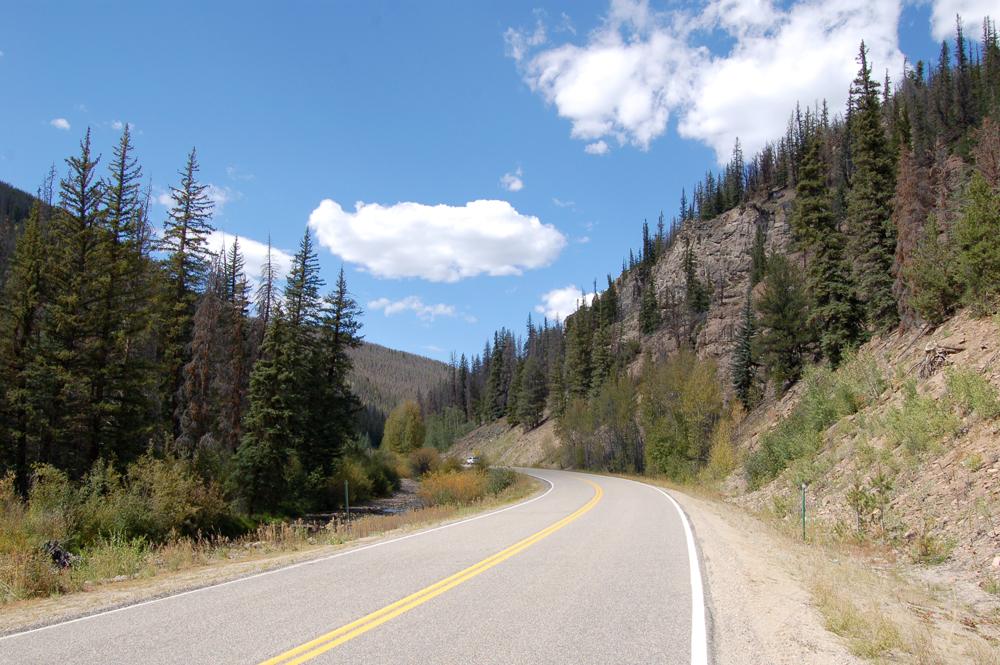 21_roadbeetle