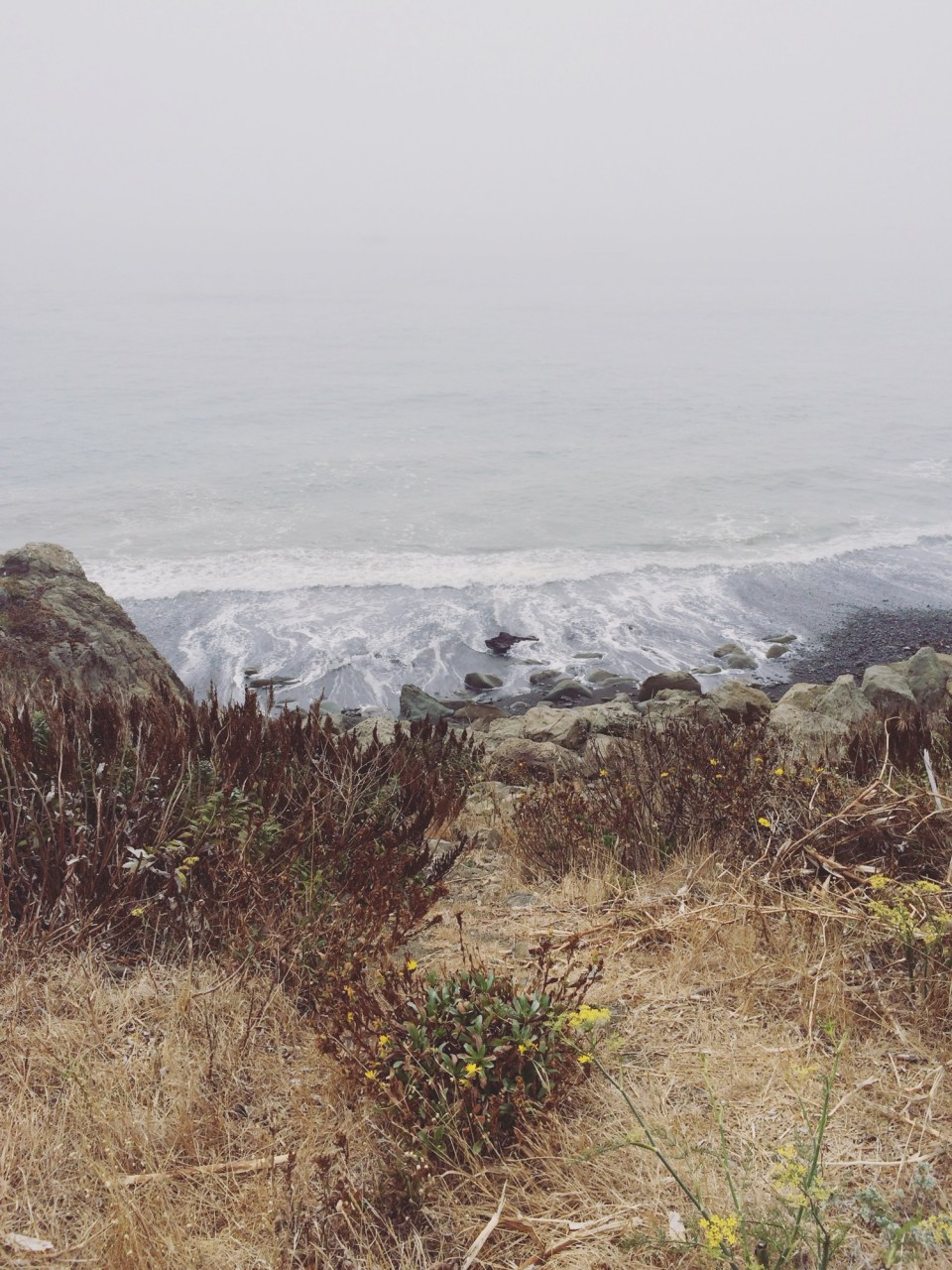 42_ocean