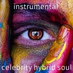 Instrumental Celebrity Hybrid Soul