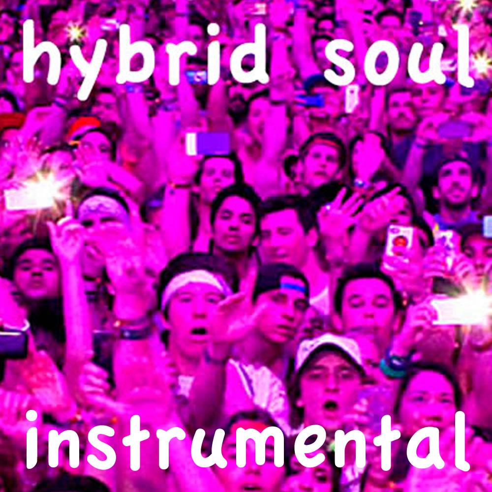 Hybrid Soul Instrumental