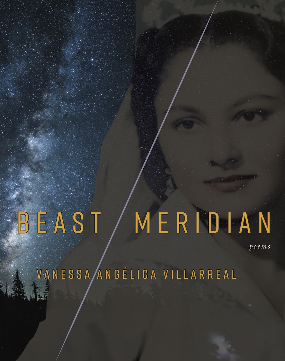 cover to Beast Meridiam. A portrait of someone in grey and black is on the right. the left third is made up of a night sky and trees.