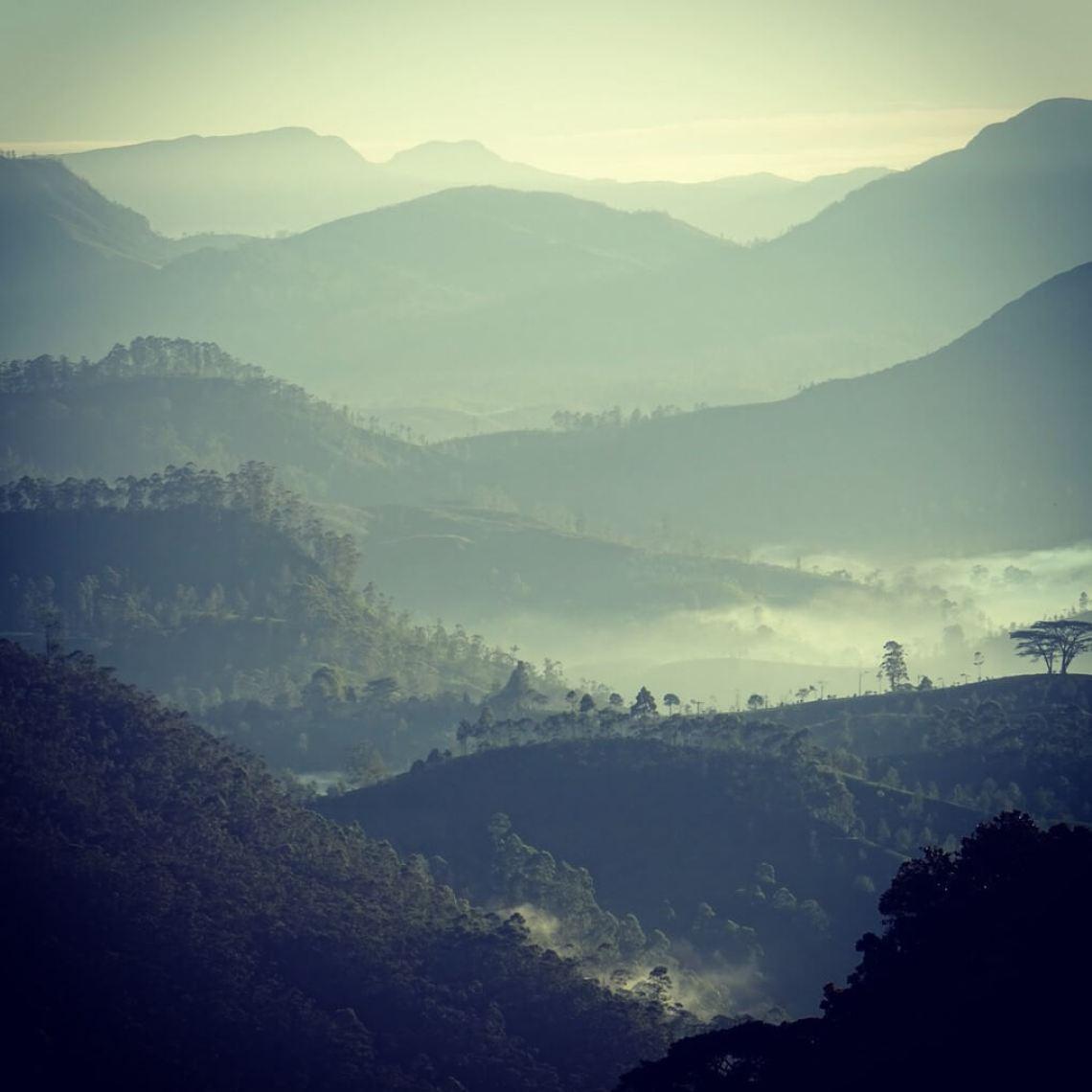 View from Adam's Peak at dawn