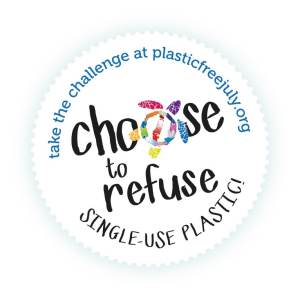 Giving Up Shampoo for Plastic Free July