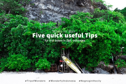 When in Bali + Five Quick useful Tips for first timers in Bali, Indonesia
