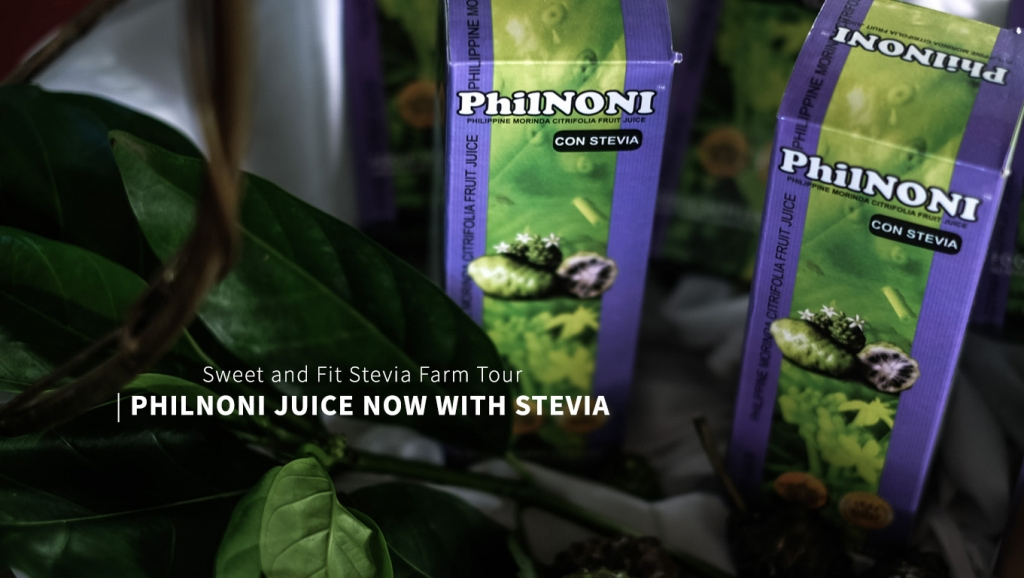 PhilNoni now with Stevia + Sweet and Fit Stevia Farm Tour
