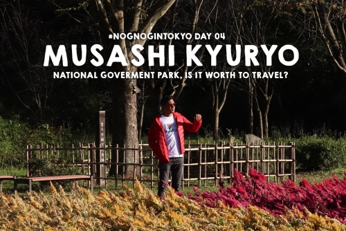 From Tokyo to Musashi Kyuryo Park (Shinrin Park) – Is it worth to travel?