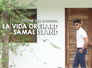 Follow your Intuition; Stay at La Vida Orchard, Samal Island