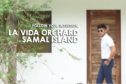 Follow your Intuition; Stay at La Vida Orchard, Samal Island