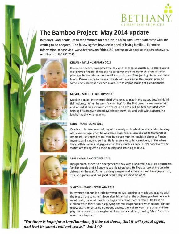 Bamboo May 2014