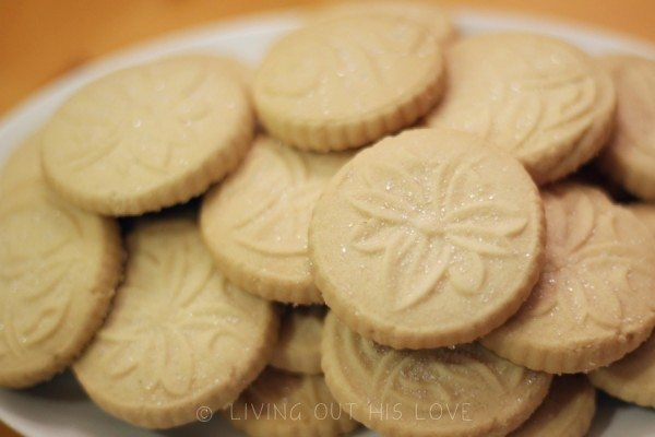 moon cookies 1