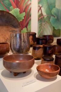 John Fackrell and Gordon Tang show at Nohea Gallery