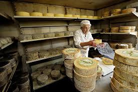 sajtkészítőmester