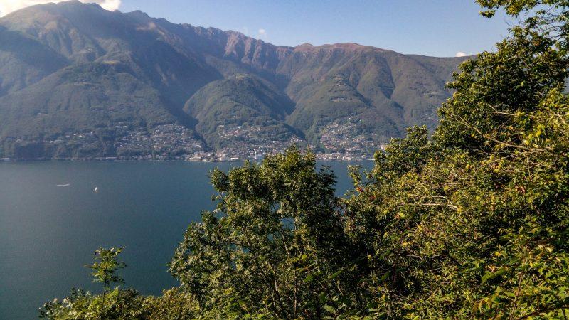 LAGO MAGGIORE'S WOOD : From Pino to Bassano.