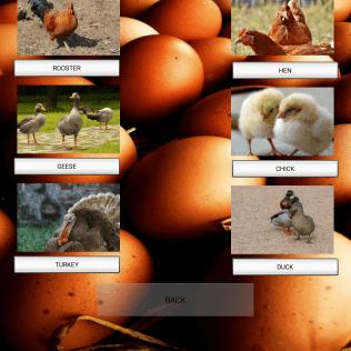 Screenshot_2019-04-20-15-10-23-505_com.countryside.andrea.lifeincountryside