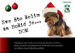 """Akcija za pomoć štičenicima """"Noine arke"""" - Sve što želim za Božić ...je DOM"""
