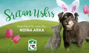 Noina-arka_Uskrs_2016