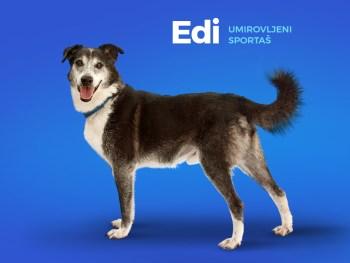 Edi ex. Udy
