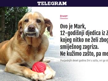 Mark je nabacio smiješak samo za tebe ;) – Telegram.hr